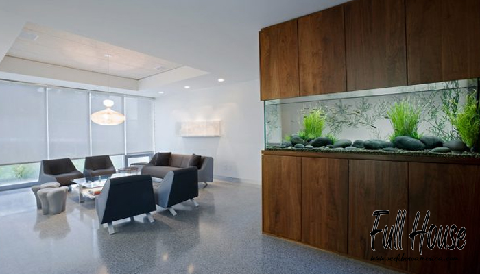 ฮวงจุ้ยตู้ปลา ควรตั้งทิศไหน จึงจะดี และเป็นการเสริมพลังชี่ ให้บ้าน