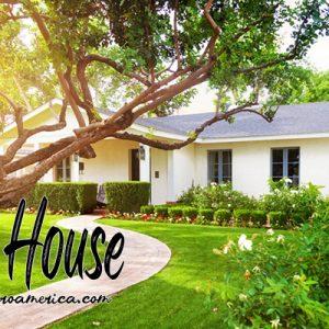 การปลูกต้นไม้หรือดอกไม้ประดับภายในบ้านตามศาสตร์ฮวงจุ้ยถือว่าเป็นสิ่งที่ควรทำ เพราะตามตำราของหลักฮวงจุ้ยนั้น การปลูกต้นไม้ไว้ภายในบ้านหรือการ